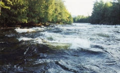 Moosehead Lake Region - Area rivers hold Atlantic salmon, brook trout, smallmouth bass