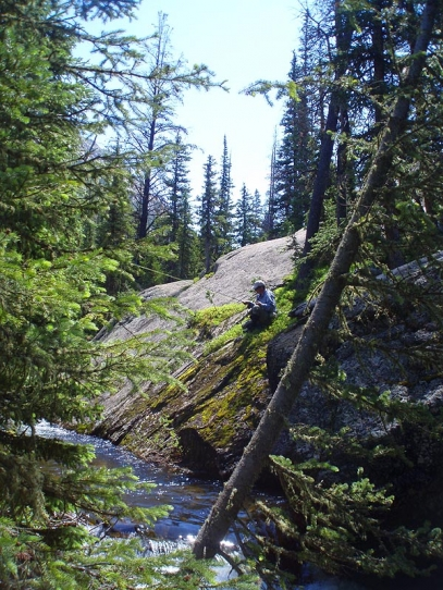 Slip Slidn' Away! - GFF Partner Steve Schweitzer carefully perches over a productive run on North Inlet Creek.
