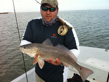 Redfish - The Tight Line Shrimp is tied for redfish