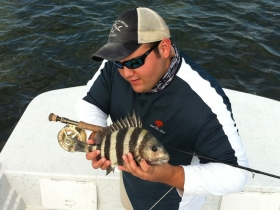 Roy with a sheepshead -