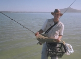 The start of the odyssey- Jacques with a sand shark in Langebaan lagoon -