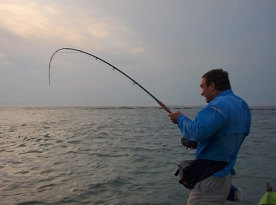 Radical reef fishing - applying the pressure -
