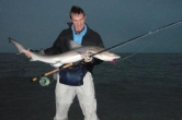 A lovely Smooth Hound shark -