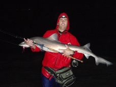 Jacques very happy with yet another Black spot gully shark. -