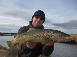 Even brownies like spiders - Large browns can be hungry, and go for tubes such as the Spider-NJ