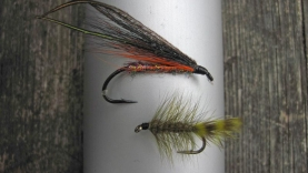 Harling team - I fished these flies trolling after the pontoon boat: the streamer as the top fly and the Wooly Bugger trailing behind it