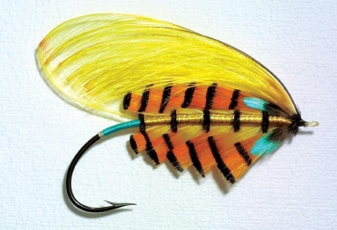 Tipperty Witchet - This Traherne fly uses GP crest for the wing and tippet feathers for the body