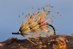 Tippet Grub - A classic salmon fly using tippet for hackles. Tied by Niels Have