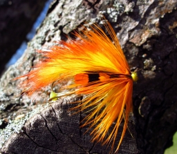 Yellow tube - The zonker strips form short and dense wings, well suited for he compact style tube flies