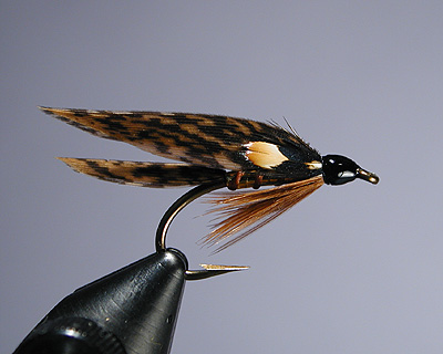 Sea Trout Fly Fishing Wet Flies Bloody Butcher Winged River Still Water Brown