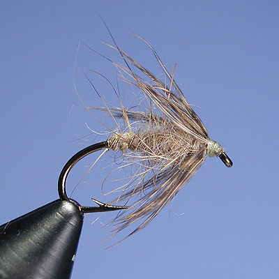 Wingless Wets Global Flyfisher On A Shelf In The Shop Was A