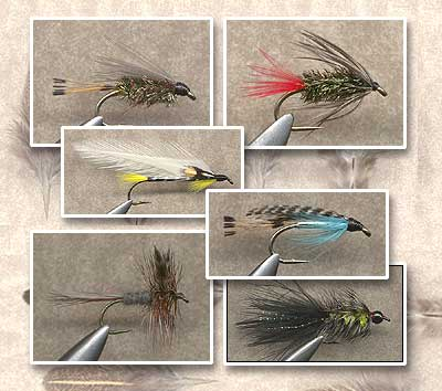 Creative Angler Peacock Eye Feathers for Fly Tying or Tying Flies 4 Feather per Pack