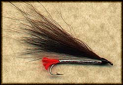 BLACKNOSE DACE: ART FLICK'S BUCKTAIL Image