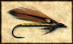 GOLDEN DARTER (LEW OATMAN) Image