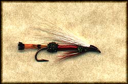 ROYAL COACHMAN HAIRWING STREAMER Image