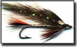 BROOK TROUT Image