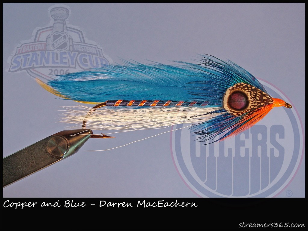 Copper and Blue Streamer Fly