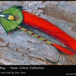 #101 Tampa Bay - Team Colors Collection - Don Soar