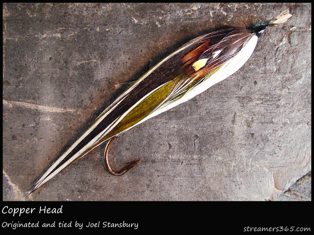 #137 Copper Head - Joel Stansbury