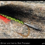 #68-2013 - Scaled Shiner Hairwing by Robert Frandsen
