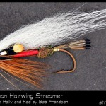 #93-2013 - Royal Coachman Hairwing by Robert Frandsen