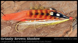 Grizzly Brown Shadow - Gary Fraser