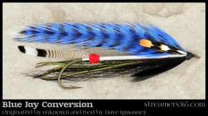 Blue Jay Conversion - Dave Lomasney