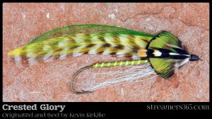 Crested Glory - Kevin Kirkelie