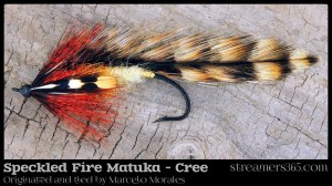 Speckled Fire Matuka (Cree) by Marcelo Morales