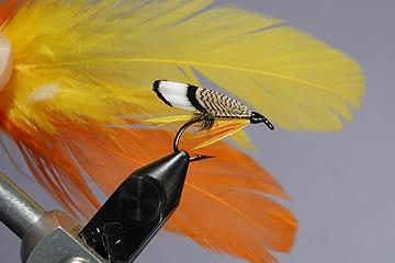 Hen Hackle | Global FlyFisher | Awhile back, I received a