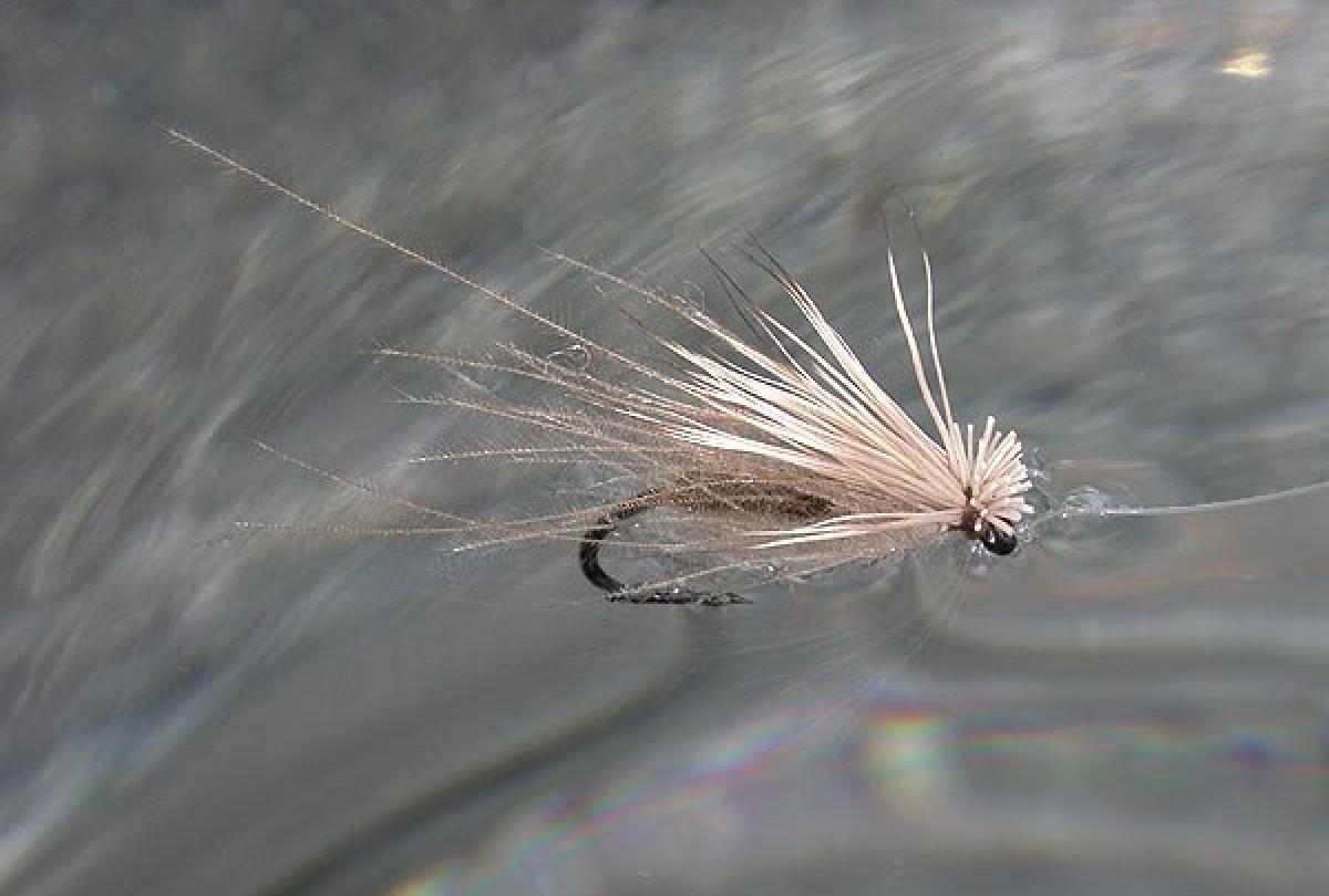 CDC Midge Emerger Dry Fly sz 22  White cdc wing  Grey  body  TAILWATER  PATTERN
