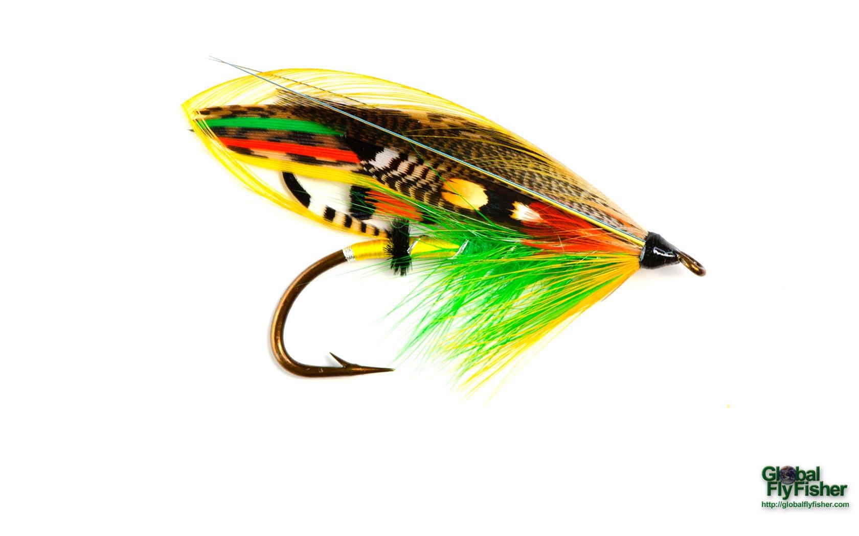 Mcintyre salmon fly global flyfisher for Salon fly
